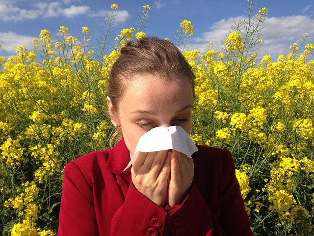 alergia na pyłki objawy